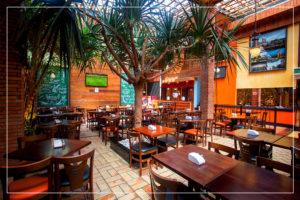 Sala dos Fundos - Árvore - Caetano's Bar - Ecológico - Natural